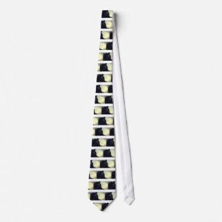 Aircraft Tie