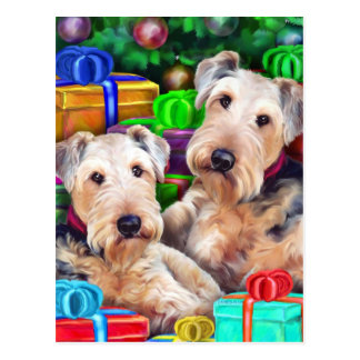Airedale Christmas Open Now Postcard
