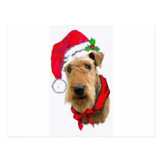 Airedale In Santa Hat Postcard