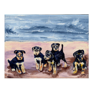 Airedale Puppies Postcard