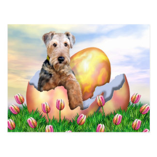 Airedale Terrier Easter Surprise Postcard