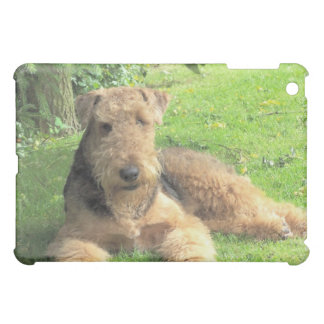 Airedale Terrier iPad Case