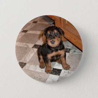 Airedale Terrier Puppy 6 Cm Round Badge