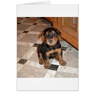 Airedale Terrier Puppy Card