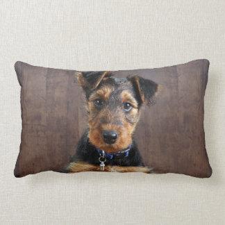 Airedale terrier puppy lumbar cushion