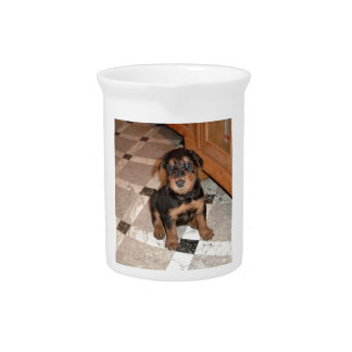 Airedale Terrier Puppy Pitcher