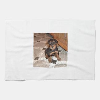 Airedale Terrier Puppy Tea Towel