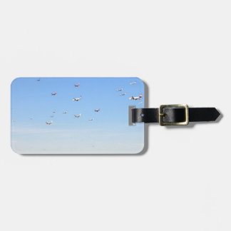 Airplane Timeline Luggage Tag