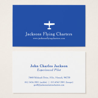 Airplane white blue modern aviation business card