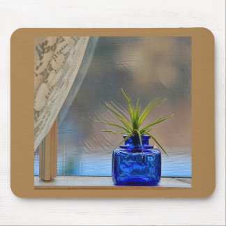 Airplant in Cobalt Inkwell Mouse Pad