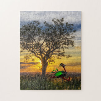 Akachi Sunset Jog Puzzle (252 pieces)