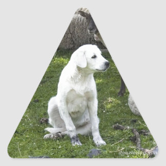Akbash Dog and Sheep Herd Triangle Sticker
