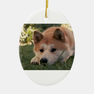 Akita Inu Dog Deep Thoughts Ceramic Ornament