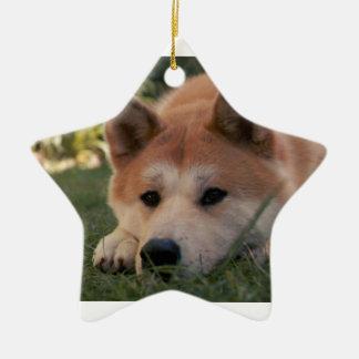 Akita Inu Dog Deep Thoughts Ceramic Star Decoration