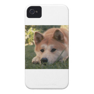 Akita Inu Dog Deep Thoughts iPhone 4 Covers