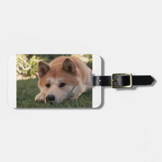 Akita Inu Dog Deep Thoughts Luggage Tag
