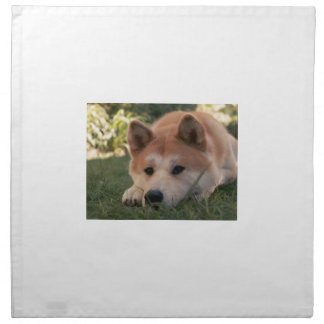 Akita Inu Dog Deep Thoughts Napkin