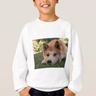 Akita Inu Dog Deep Thoughts Sweatshirt