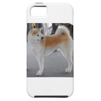 Akita Inu Dog In A Dog Show Case For The iPhone 5