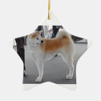 Akita Inu Dog In A Dog Show Ceramic Star Decoration