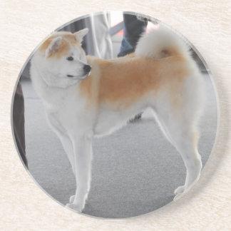 Akita Inu Dog In A Dog Show Coaster