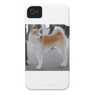 Akita Inu Dog In A Dog Show iPhone 4 Case-Mate Cases