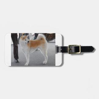 Akita Inu Dog In A Dog Show Luggage Tag