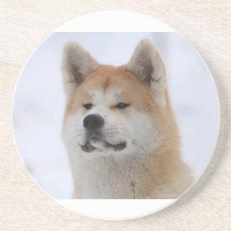 Akita Inu Dog Looking Serious Coaster