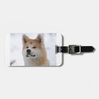 Akita Inu Dog Looking Serious Luggage Tag
