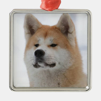 Akita Inu Dog Looking Serious Silver-Colored Square Decoration