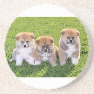 Akita Inu Dog Puppies Coaster