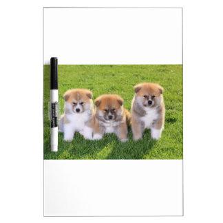 Akita Inu Dog Puppies Dry Erase Board