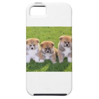 Akita Inu Dog Puppies iPhone 5 Case