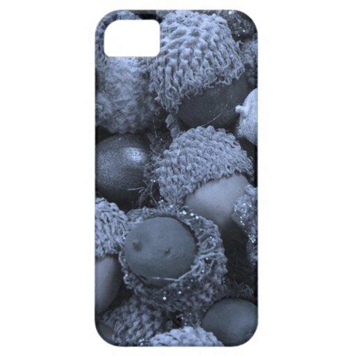 Akorns 2.JPG iPhone 5/5S Covers