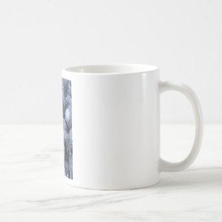 Akorns 2.JPG Mugs