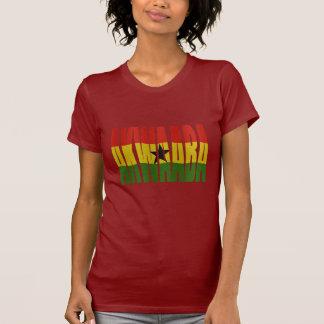 Akwaaba - You're Welcome - Twi + Ghana Flag T-Shirt
