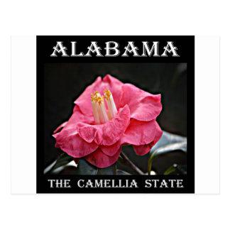 Alabama Camellia Postcard