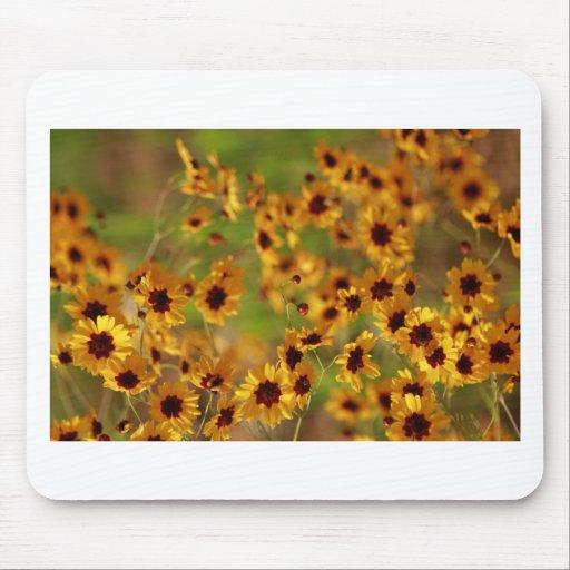 Alabama Golden Coreopsis tinctoria Wildflowers Mouse Pads