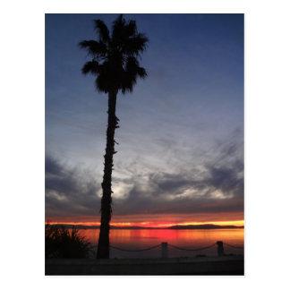 Alameda, CA Sunset Postcard