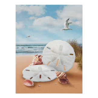 "Alan Giana ""Sand Dollars"" Poster"