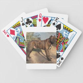 Alano Español Dog Bicycle Playing Cards