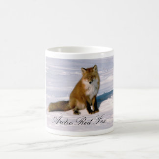Alaska Arctic Red Fox Coffee Mug