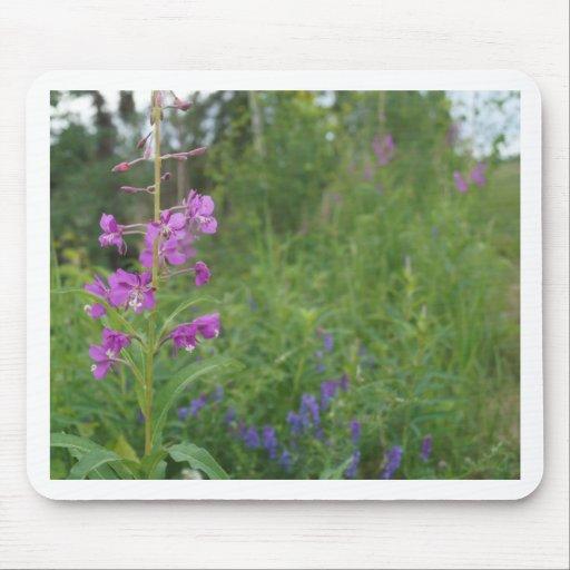 Alaska Fireweed wildflower Mousepad