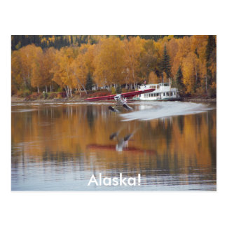 Alaska, Floatplane, Riverboat, Birch trees in Fall Postcard
