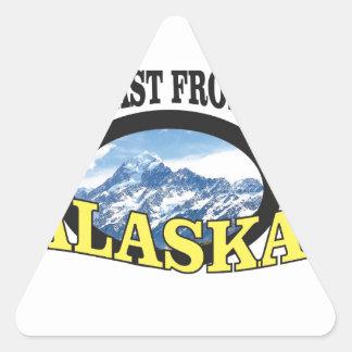 alaska logo art triangle sticker