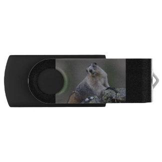 alaska marmot USB flash drive