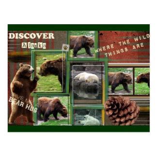 Alaska-Where The Wild Things Are Postcard