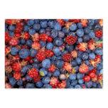 Alaska Wild Berries Fruits