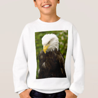 Alaskan Bald Eagle Sweatshirt