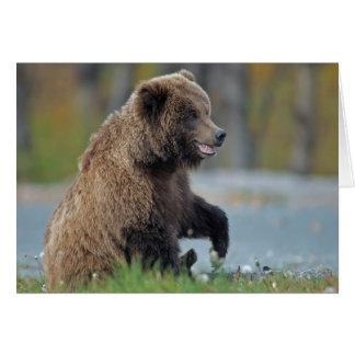 Alaskan Brown Bear at Kenai NWR Card